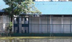 Nyong'o turns Jaramogi Oginga Odinga sports ground into Chichwa market