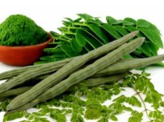 Top 10 Benefits of Moringa Oleifera