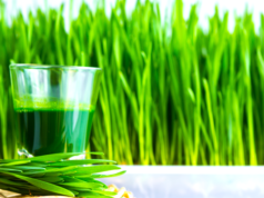 Top Eight Health Benefits of Wheat grass