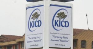 KICD Reveals New Literature and Fasihi Setbooks For 2022-2025-How To Get Your Copies